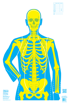 Bones Yellow & Green